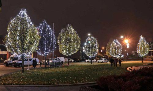 Pea-lights