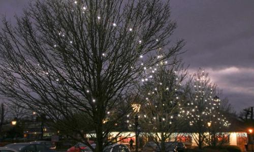 LED Chestnut Lights 2