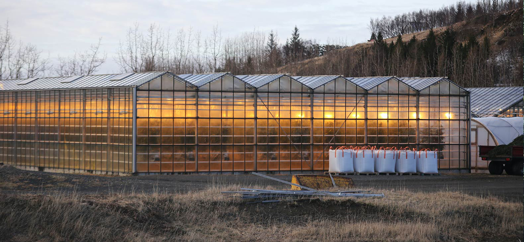 Industrial Greenhouse